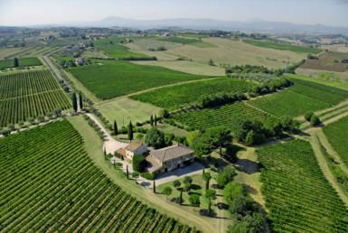panoramica Azienda agricola a montepulciano